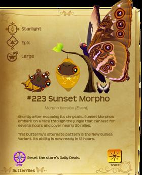 Sunset Morpho§Flutterpedia UpgradedAlt