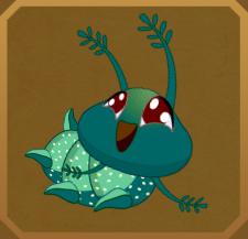 Green Charaxes§Caterpillar