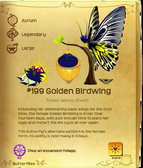 Golden Birdwing§Flutterpedia UpgradedAlt