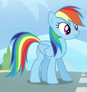 Rainbow Dash standing on track