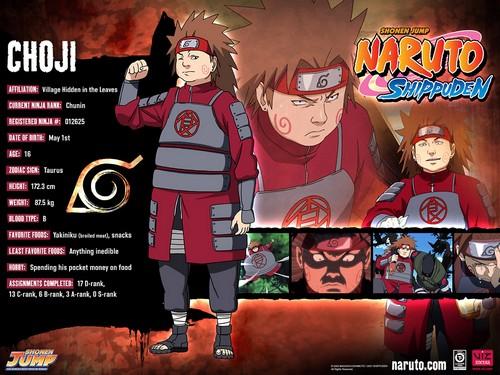 File:Naruto-characters-profiles-tsunade360-30617473-500-375.jpg