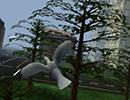 File:Game flylikeabird3.jpg