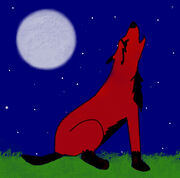 RP's wolf for me