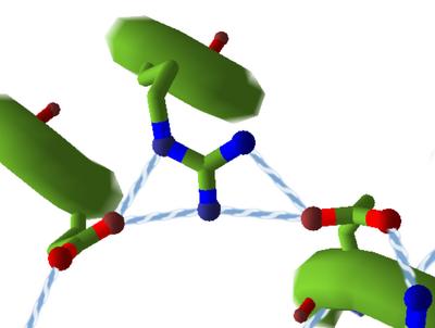 HydrogenBondsSidechain.cartroonthin