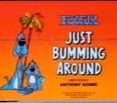 Just Bumming Around