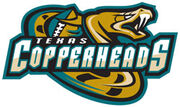Texas Copperheads