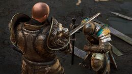 Knights campaign1 - being knighted