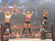 WWEFEVelvet2