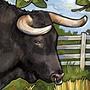 Ranching (tech)