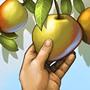 Cultivation (tech)