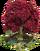 Eternal Tree of Love