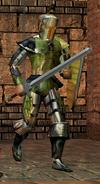 NWN - HoU - Waterdeep Guard