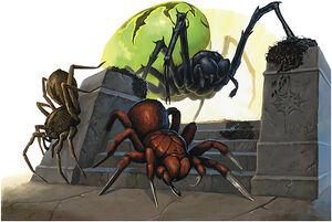 Spiders - Warren Mahy