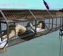 Cage télescopique