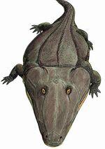 Mastodonsaurus torvus DB