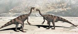 Plateosaurus BW