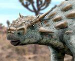 Minotaurasaurus BW