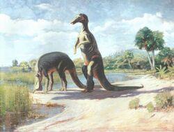 Anatotitan C.Knight