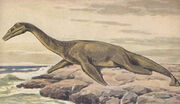 Plesiosaur on land