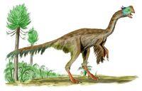 Gigantoraptor BW