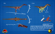 Jurassicraft blueprint segisaurus by jurassicraft-d8pi9g8