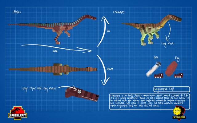 File:Jurassicraft blueprint segisaurus by jurassicraft-d8pi9g8.jpg