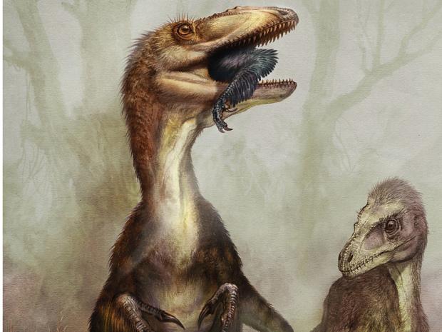 File:Predatory dinosaur 20120829.jpg