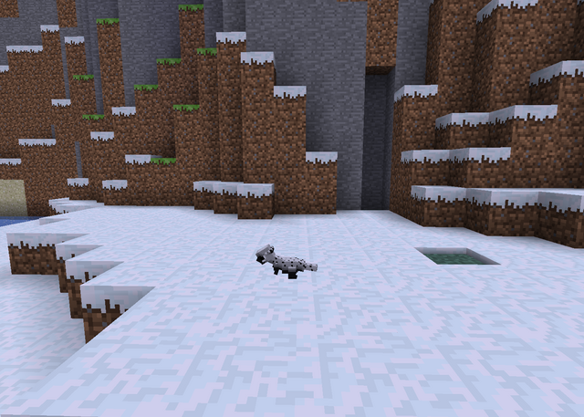 File:Pachy snow.png