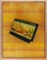 Game Cartridge Item.png