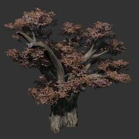 File:African Baobab.png