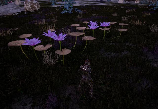 File:Herbal Flower3.png