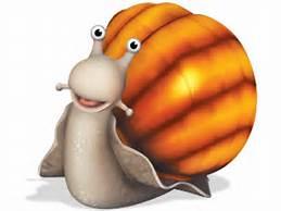File:Snail.jpg