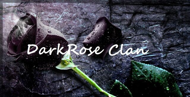 File:Dark rose.jpg