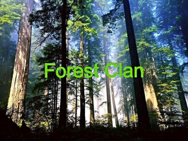 File:Forest clan version 1.jpg