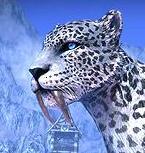 File:Snow leopard.png
