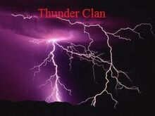 Thunder flag