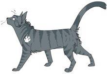 Jayfeather meow meow
