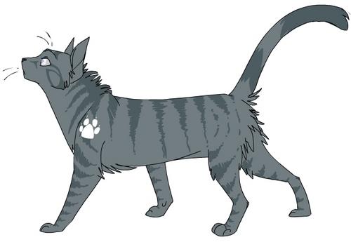 File:Jayfeather meow meow.jpg
