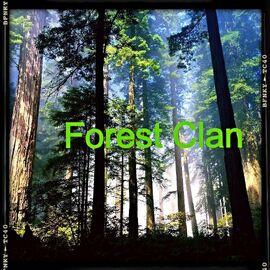Forest Clan Flag v.3