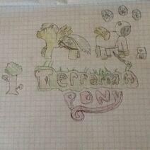 Terrarian Pony