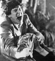 Fright Night 1985 Vampire Bat William Ragsdale.jpg