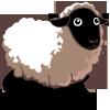 Sheep Adult-icon