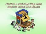 Pet Store Loading Screen