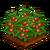 Cherry Tomato-icon