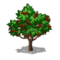 Coffeetree icon.10