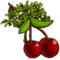 Cherry Tree-icon