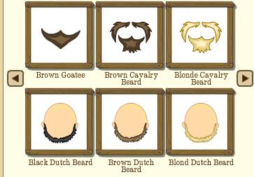 Male Facial Hair Type 2