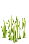 File:Grass5-icon.png