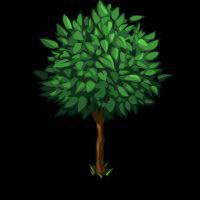 File:Pear Tree Big-icon.png