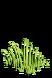 Grass-icon